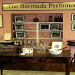 The Appeal of the Bermuda Perfumery 'Lili Bermuda'